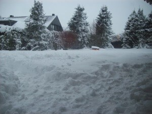 Gasgrill Tipps für den Winter